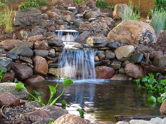 Pond pictures waterfalls backyard koi pond for Yard ponds and waterfalls